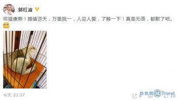 今日热点:贾乃亮金晨方否认恋情 社保降费正式实施