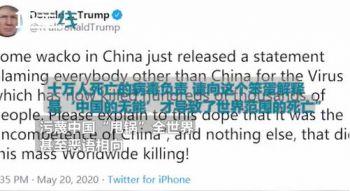 胡锡进和特朗普杠起来了!谁是中国的一个疯子?