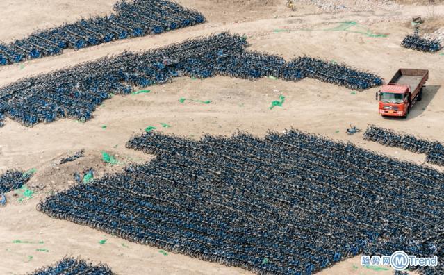 今日热点:遛豹子吓坏邻居 搁置6万小蓝单车