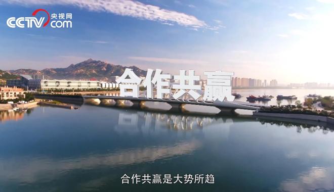 """,上合青岛峰会,""""和合""""理念比金贵"""