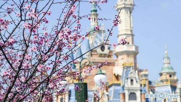 今日热点:上海迪士尼闭园 北大三次退档考生