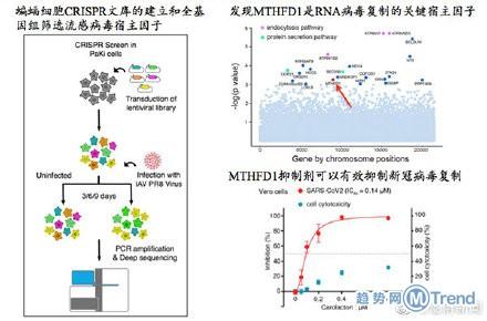 热点:蝙蝠中现病毒抑制剂 高考延期一个月湖北北京另安排
