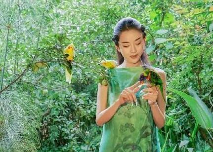 杨丽萍被评论没子女是失败 戚薇发文力挺