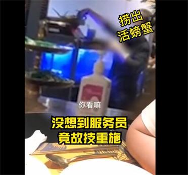 上海知名餐厅用死蟹换活蟹!父母起诉22岁女儿拒养弟弟胜诉