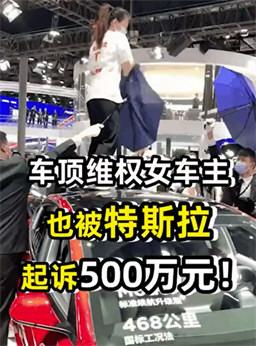 维权车主被特斯拉索赔500万