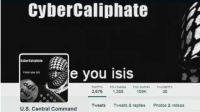 黑客组织的宣战真的能够打击ISIS吗?