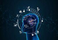 科学家发现大脑内部的时钟影响我们感知时间