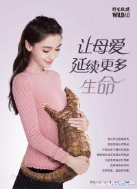 今日热点:杨颖拍广告帮倒忙 陈昱霖甩卖奢侈品