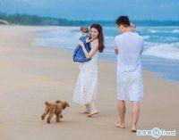 今日热点:贾跃亭和甘薇离婚 范冰冰戒指抢镜