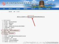 热点:鄂A0260W和武汉市政府办公厅什么关系?