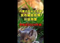 内蒙古包头出现1例鼠疫死亡病例!进入预警期