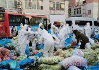 31省区市新确诊82例吉林死亡1例 通化道歉后物资配送仍未解决